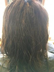 シリコーン病 美容室 髪のクセの治し方