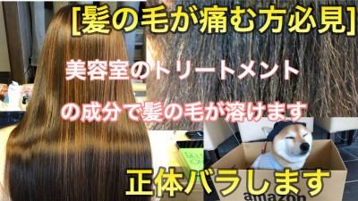 髪の毛が痛む 髪の毛の毛先が痛む 美容室のトリートメント 最低限ノンシリコーン 土浦市 美容室 」りずむヘアデザイン