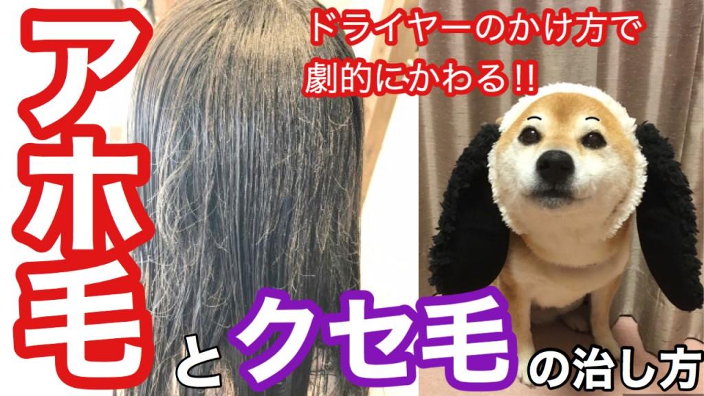 アホ毛 クセ毛 ドライヤー 治し方 美容室 りずむヘアデザイン 還元美容 最低限ノンシリコーン