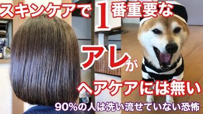 スキンケア ヘアケア 髪の毛のクレンジング デトックス デトックストリートメント 還元美容 土浦市 美容室 りずむヘアデザイン シリコン病 キレイになりたい人と繋がりたい 髪の毛のクレンジング