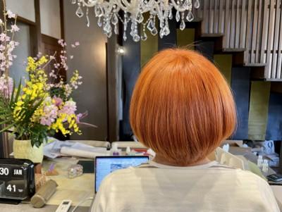ダブルカラー オレンジ タイガーリリィ ミラ・ジョコビッチ フィフス・エレメント りずむヘアデザイン 土浦市 美容室