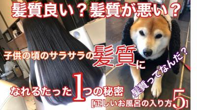 YouTube 柴犬を見ながら髪質肌質改善チャンネル 髪質改善 土浦市 美容室 りずむヘアデザイン