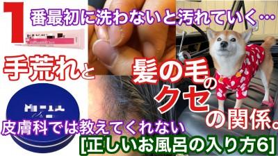 YouTube 柴犬を見ながら髪質は肌質改善チャンネル 柴改 土浦市 美容室 りずむヘアデザイン 還元美容