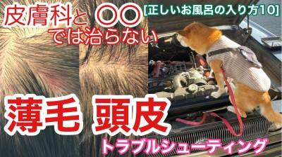 YouTube 薄毛 頭皮 皮膚科 正しいお風呂の入り方 トラブルシューティング 柴犬を見ながら髪質肌質改善チャンネル 土浦市 美容室 りずむヘアデザイン
